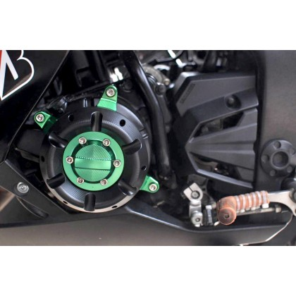Ninja250 Z250 13-17 Engine Guard Design 3