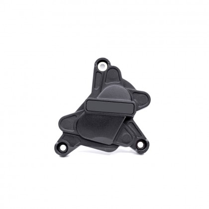 R1 09-14 Racing Engine Guard