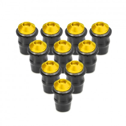Windshield Screw Set